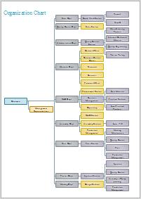 Divisionale Organisationsstruktur