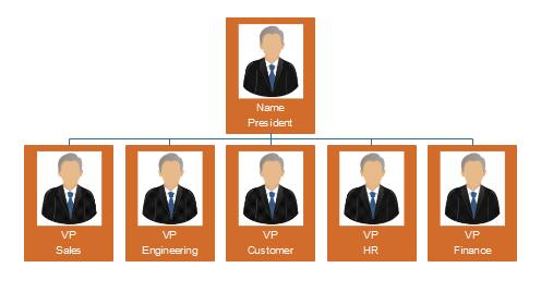 Funktionale Organisationsstruktur