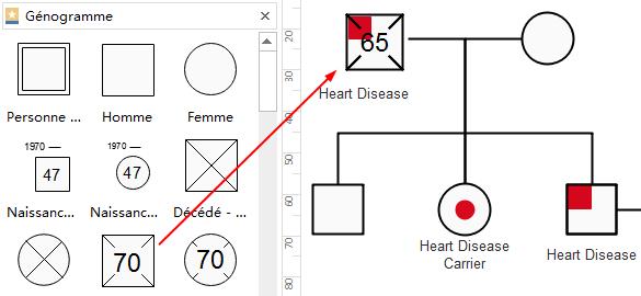 Ajouter des symboles de génogramme