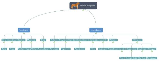 Gamme de modèle de dendrogramme de produits