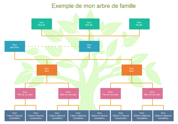 Logiciel pour la cr ation d 39 arbre g n alogique for Entreprise facile a creer