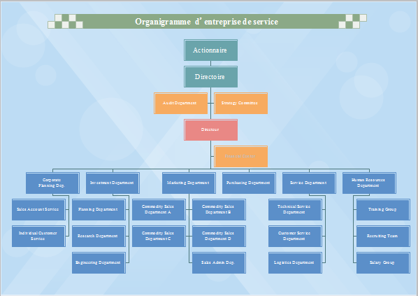 Exemple d 39 organigramme de soci t de services - Comment faire un organigramme sur open office ...