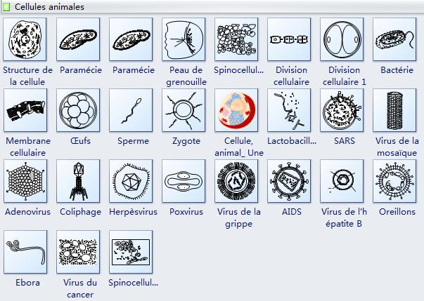 Symboles de cellules de virus et de cellules animales