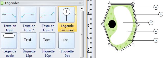 Etiquetter le diagramme de cellules avec des symboles de légende