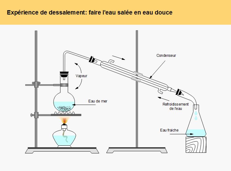 mdoèles d'expérience laboratoire