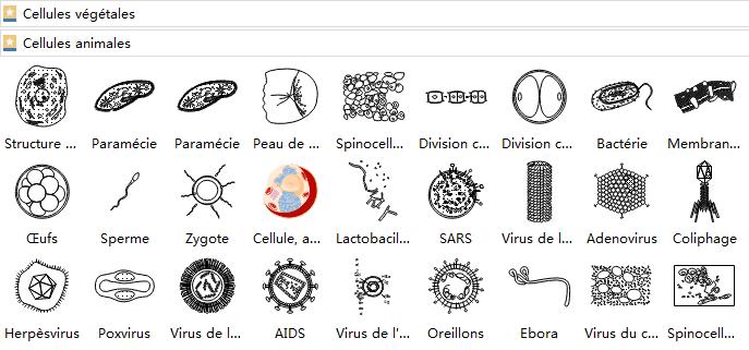 symboles de cellules