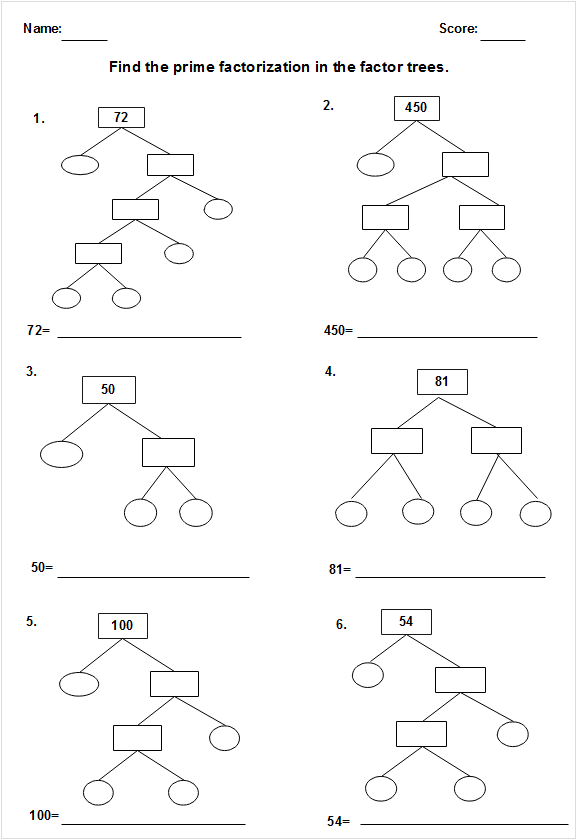 Sketched Factor Tree Worksheet Template