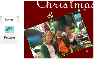 Christmas Card Picture Insert