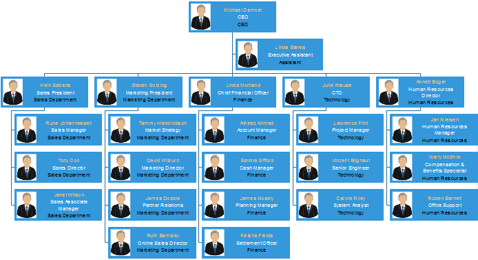 org chart display