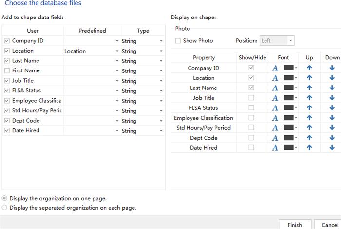 set org chart display options