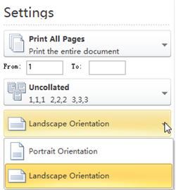 Paper Orientation Tab