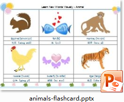 Animals Flash Card