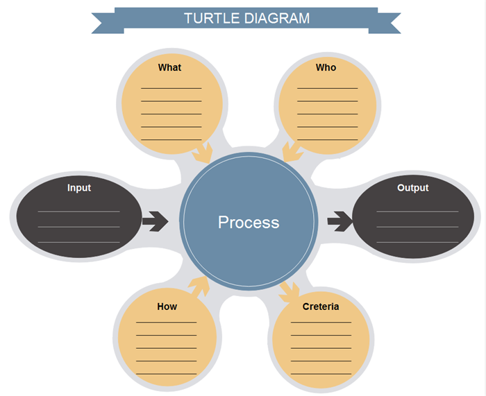 Turtle Diagram Template 2