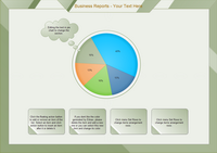 Business Reports Pie