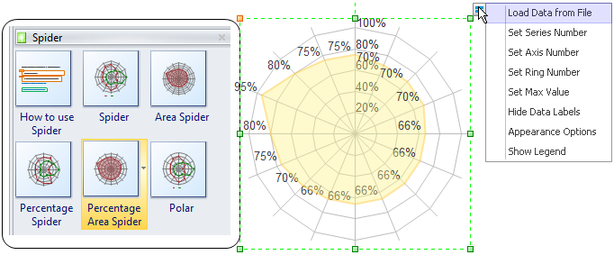 Survey Report Spider Chart