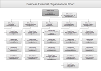 Financial Organizational Chart