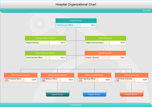 Hospital organizational chart lots of sample organization chart