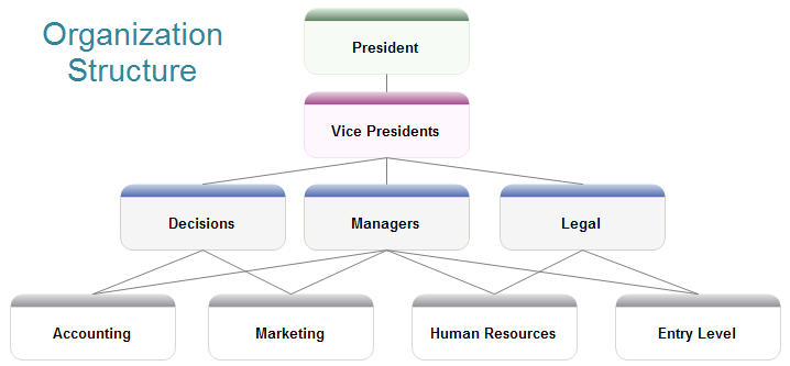organizational structure diagram softwareorganization structure example
