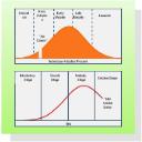 Marketing Charts Drawing Type
