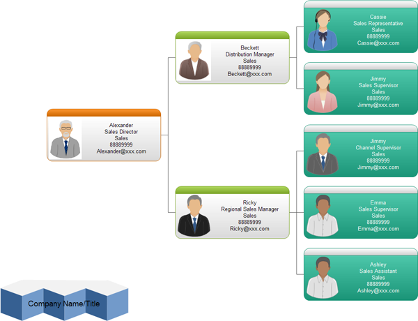 Management Organizational Chart, Examples and Templates