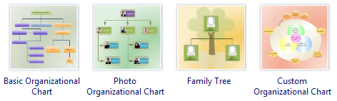 Organizational Chart Software