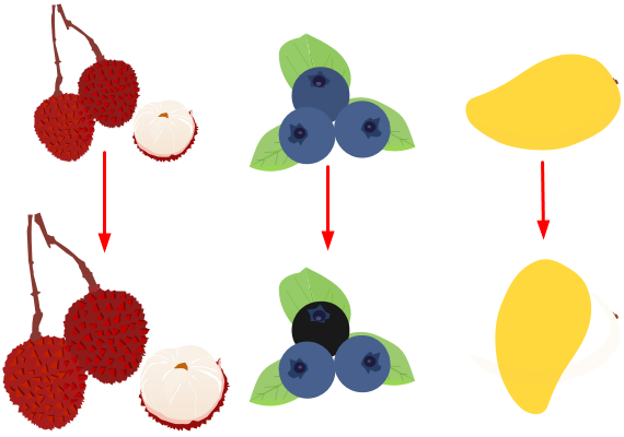 Edit Fruit Elements