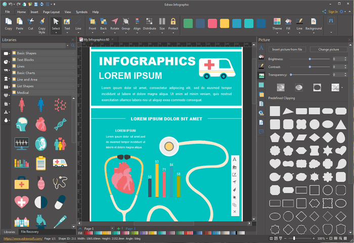 Edit Medical Infographic Templates