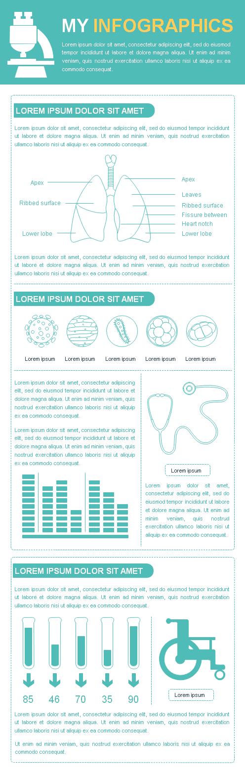 Modèle d'infographie vierge avec les organes humains