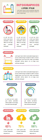Social Media Infographic Example 3