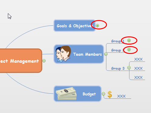 Project Management Mindmap Display