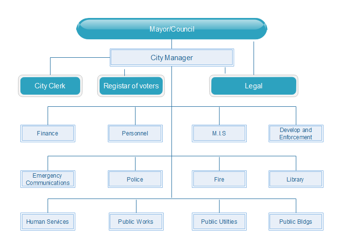 municipal Matrix Structure Diagram
