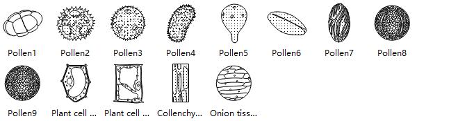 Plant Cell Symbols