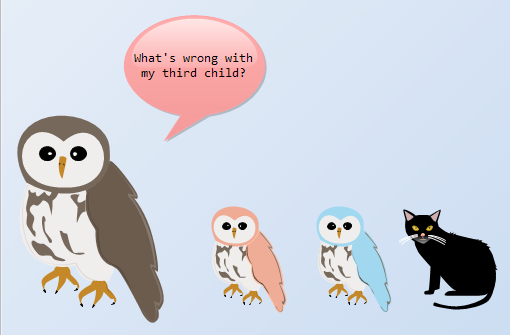 Funny Owls Illustration