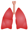 Lung Symbols