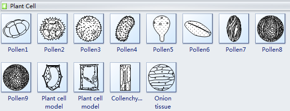 Plant Cells Diagram Symbols