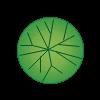 Plante 49