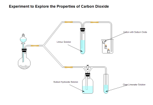 Carbon Dioxide Properties Examples