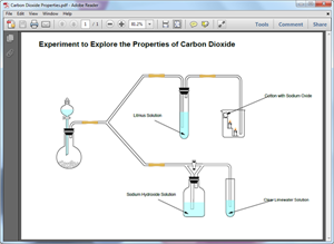 PDF Chemistry Experiment Diagram Template