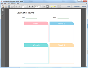 PDF Graphic Organizers Template