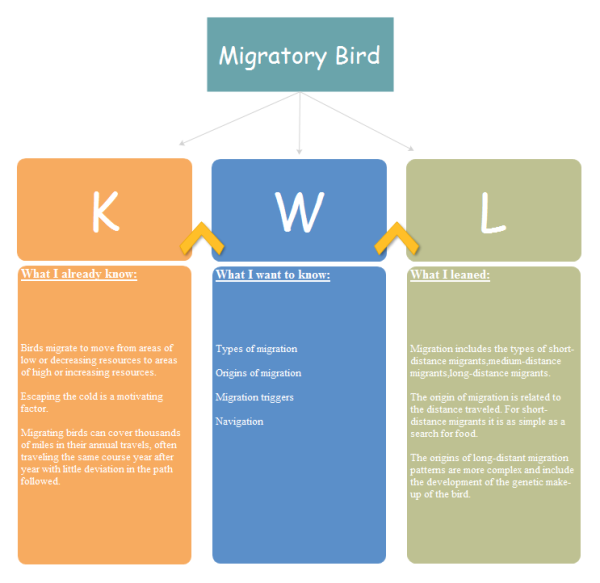 Migratory bird kwl chart examples and templates for Kwl chart template word document