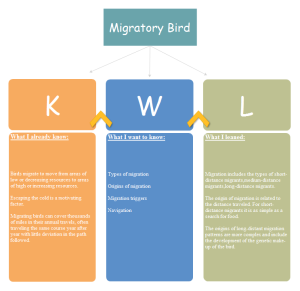 KWLMigratory Bird Examples