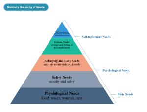 Exemple de diagramme pyramidal des besoins