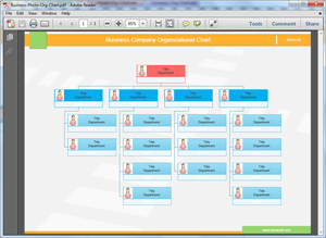 Plantilla de organigrama en PDF