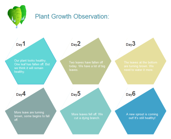 Plant Growth Observation Chart Template