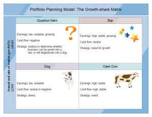 Portfolio Planning Model Examples
