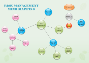 Risk Management Bubble Diagram Examples