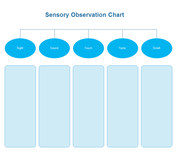 Sensory Observation Chart Examples And Templates