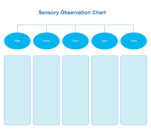 Sensory Observation Chart Examples