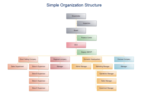 Simple Organization Structure Templates And Examples