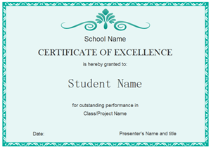 Student Excellence Certificate 300